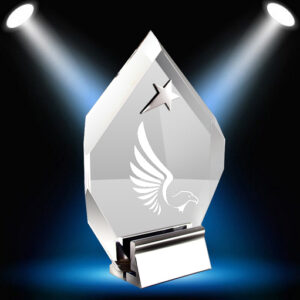 Diamond-shaped award with etched eagle and star